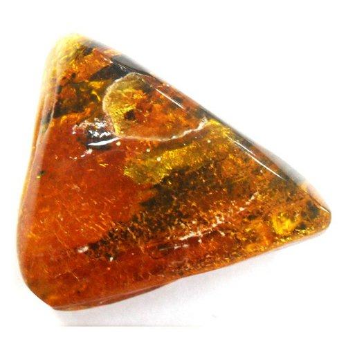 Amber specimen