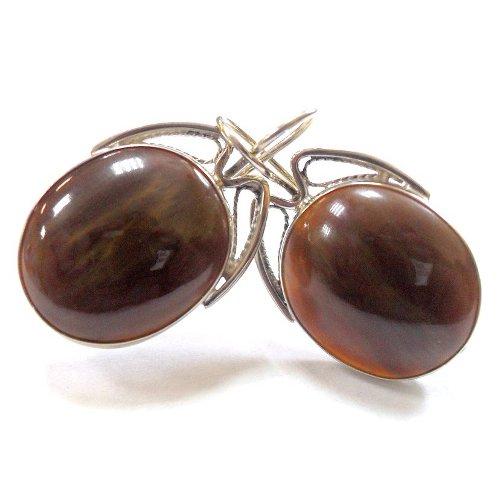 Petrified wood earrings