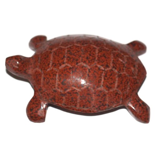 Analcimolite turtle